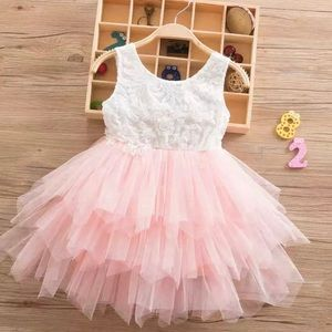 Peach and White Lace Embroidered Princess Dress